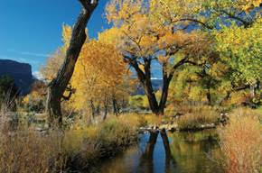 Celebrate a Scenic, Outdoorsy Thanksgiving at Gateway Canyons Resort & Spa (Gateway, CO)
