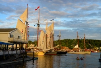 Windjammers in Boothbay Harbor, Photo Credit-Steve Demeranville, Antique Boat Parade, Pirates of the Dark Rose